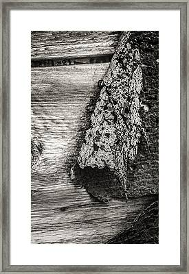 Quartz Mountain 24 Framed Print