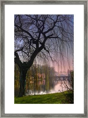 Minnewater Lake Bruges Framed Print by Carol Japp