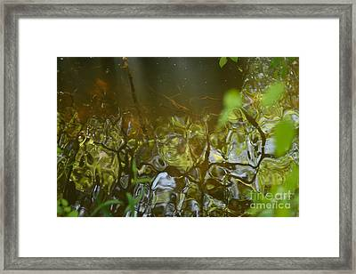 Minnow Creek Framed Print by Russell Christie
