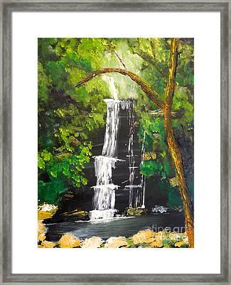 Minnumurra Falls Framed Print
