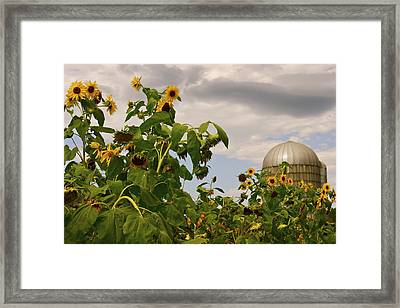 Framed Print featuring the photograph Minot Farm by Alice Mainville