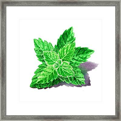 Framed Print featuring the painting Mint Leaves by Irina Sztukowski