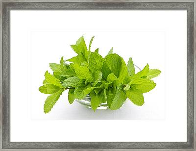 Mint Sprigs In Bowl Framed Print by Elena Elisseeva