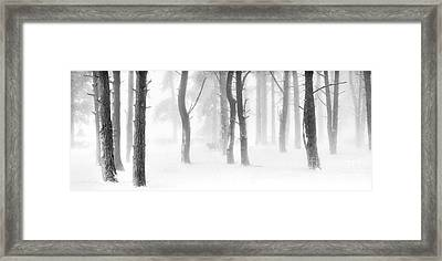 Minus Five Framed Print by Janet Burdon