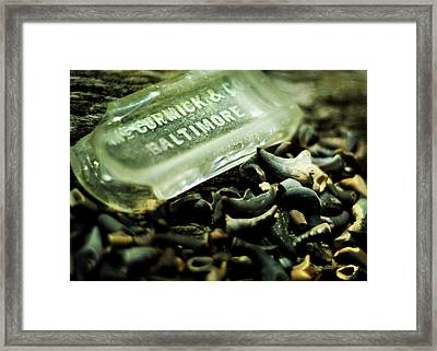 Miocene And Mccormick Framed Print