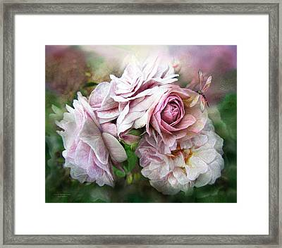 Miracle Of A Rose - Mauve Framed Print