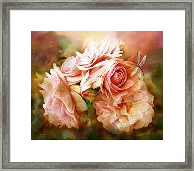 Miracle Of A Rose - Peach Framed Print by Carol Cavalaris