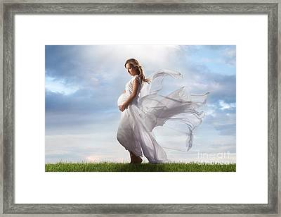 Miracle Of Life Framed Print by Cindy Singleton