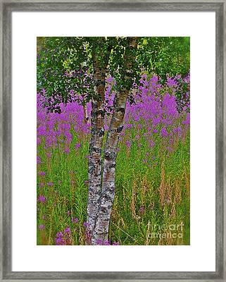 Miracles Happen They Do Trondelag - Norway Framed Print by  Andrzej Goszcz