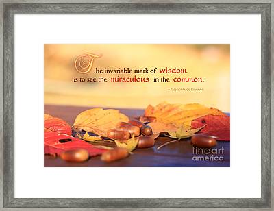 Miraculous In The Common On A Fine Autumn Day Framed Print by Beverly Claire Kaiya