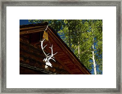 Miranda Camp, Baldy Mountain, Philmont Framed Print by Maresa Pryor