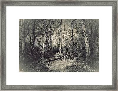 Mirkwood Framed Print by Jessica Brawley