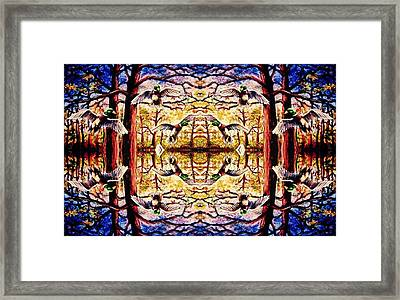 Mirror Ducks Framed Print by Sebastian Pierre