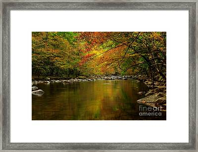 Framed Print featuring the photograph Mirror Fall Stream In The Mountains by Debbie Green