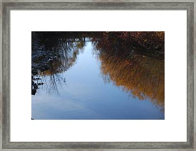 Framed Print featuring the photograph Mirror Image by Ramona Whiteaker