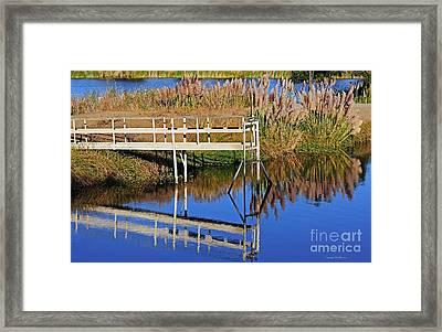 Mirror Lake Framed Print