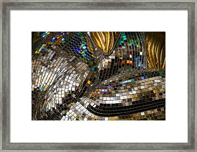 Framed Print featuring the photograph Mirror Mirror On A Horse by Glenn DiPaola