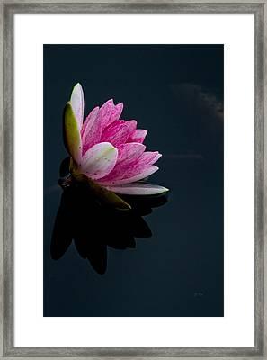 Mirror... Mirror On The Water Framed Print by Eti Reid