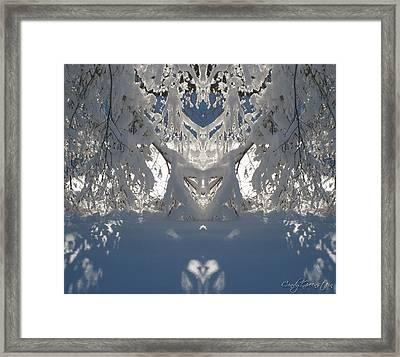 Mirror Of Snow  Framed Print