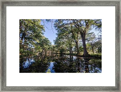 Mirror On The Frio Framed Print by Jeffrey W Spencer