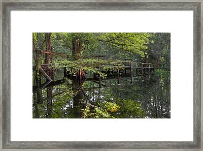 Mirror To The Soul Framed Print by Debra and Dave Vanderlaan