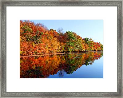 Mirrored Palette Framed Print by James Hammen