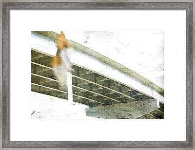 Misdirect Framed Print by Mark Ross