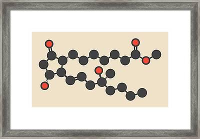 Misoprostol Molecule Framed Print by Molekuul