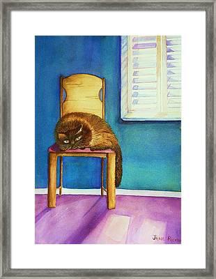 Kitty's Nap Framed Print