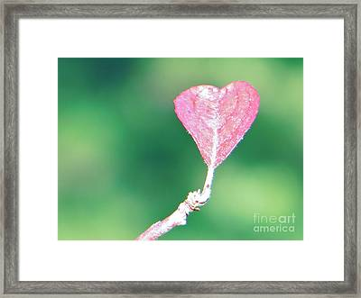 Miss Lonely Heart Framed Print by Joy Hardee