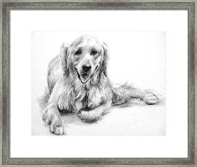 Framed Print featuring the drawing Miss Maddie  by Meagan  Visser