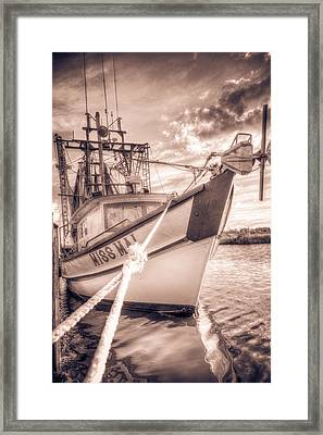 Miss Mai Framed Print by Mark Hazelton
