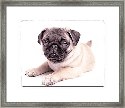 Miss You Framed Print