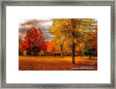 Missing Fall Framed Print