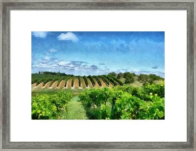 Mission Peninsula Vineyard Ll Framed Print by Michelle Calkins