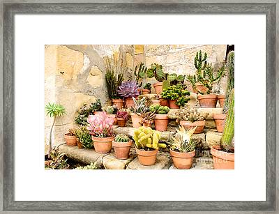 Framed Print featuring the photograph Mission Succulents by Vinnie Oakes
