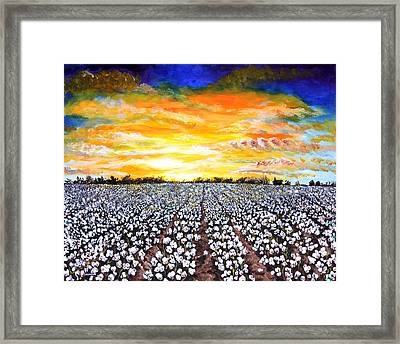 Mississippi Delta Cotton Field Sunset Framed Print by Karl Wagner