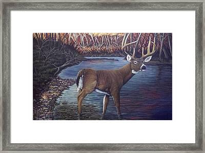 Missouri Morning Framed Print by Dan Parsons