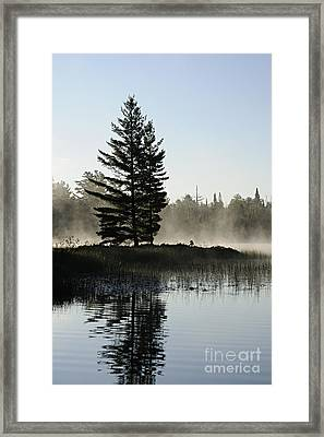 Mist And Silhouette Framed Print by Larry Ricker