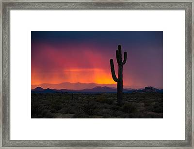 Mist At Sunset Framed Print
