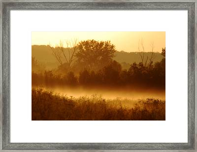 Mist Burning Off The Field Framed Print