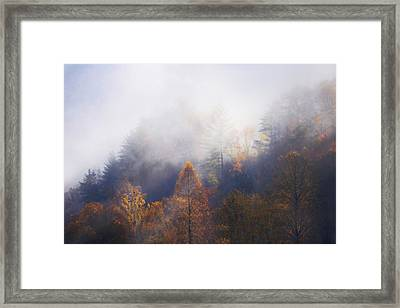 Mist In Mountains Framed Print by Dorothy Walker