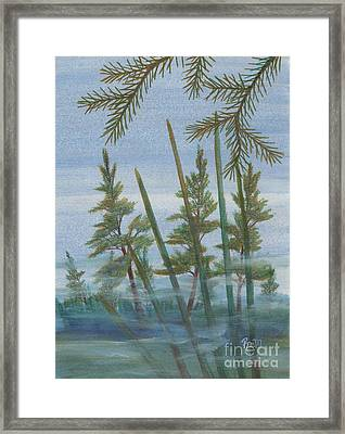 Mist In The Marsh Framed Print by Robert Meszaros