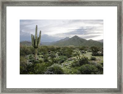 Framed Print featuring the photograph Mist On The Mountains by Phyllis Peterson