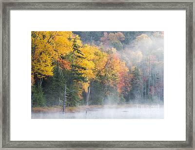 Mist Over Fly Pond Framed Print