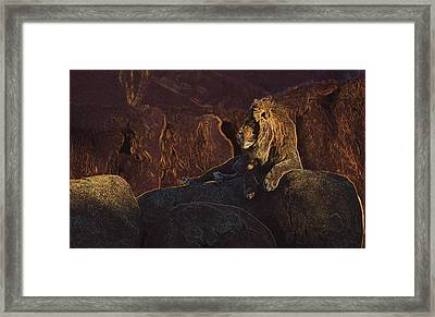 Framed Print featuring the photograph Mister Majestic by David Andersen