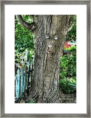 Mister Tree Framed Print