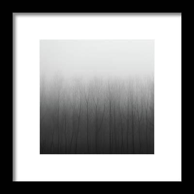 Niebla Framed Prints