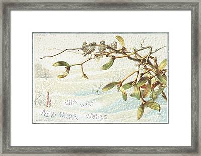 Mistletoe In The Snow Framed Print
