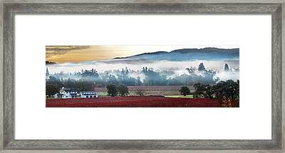 Mists Of Avalon Calistoga Color Framed Print by Stan Angel